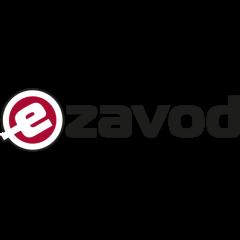 eZavod : Slovenia